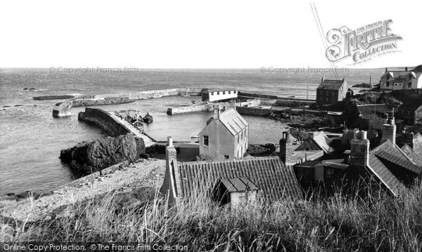 Photo of St Abbs, the Harbour from the Cliffs c1955, ref. s416011