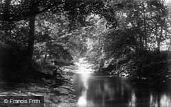 Elwy River, Cefn c.1875, St Asaph