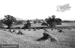 Harvest Field 1890, St Asaph