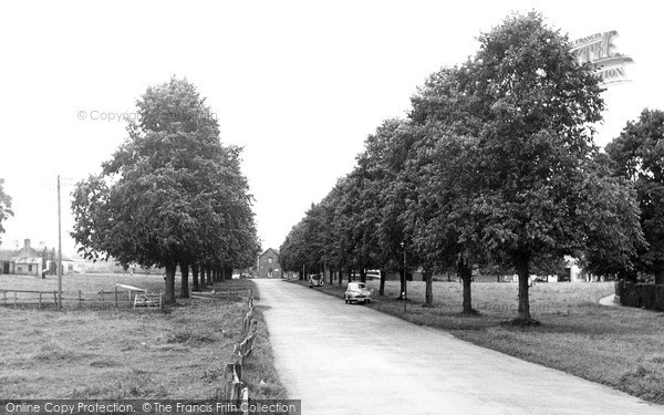 Photo of St Boswells, the Avenue c1955, ref. s417005