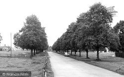 The Avenue c.1955, St Boswells