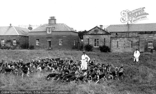 Photo of St Boswells, The Buccleuch Hounds c.1955
