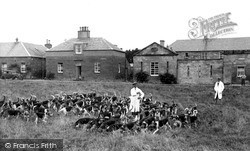 The Buccleuch Hounds c.1955, St Boswells