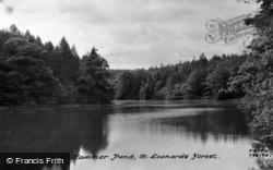 St Leonards Forest, Hammer Ponds c.1927
