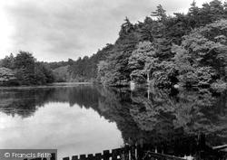St Leonards Forest, Hammer Ponds, Furnace Ponds 1927