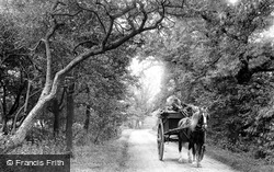 Mill Lane 1897, St Neots