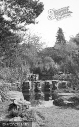 St Osyth, The Priory Lily Pond c.1955