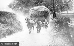 Stafford, Hay Carting c.1900