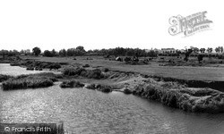 Stanford-Le-Hope, Camping Ground c.1955
