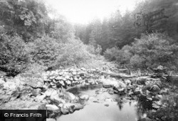 Deepdale Woods 1892, Startforth
