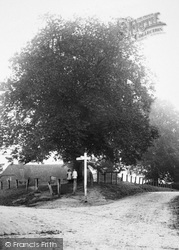 Stibb Green, Stibb Farm And The Signpost 1907