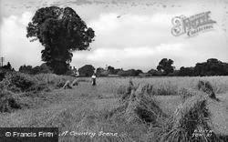 A Country Scene c.1955, Stock