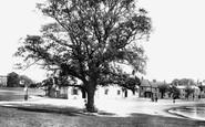 Stockton-on-Tees, Norton Green 1896