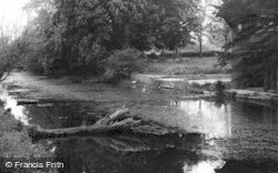 The Canal c.1955, Stonehouse