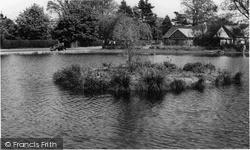 Storrington, The Pond c.1965