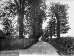 Stoughton, Grange Lane 1925