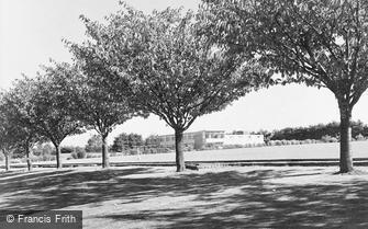 Stoughton, WRAC, the Junior Ranks Club c1955