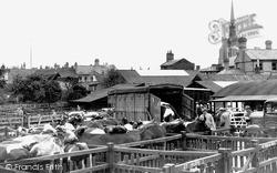 The Cattle Market c.1950, Stowmarket