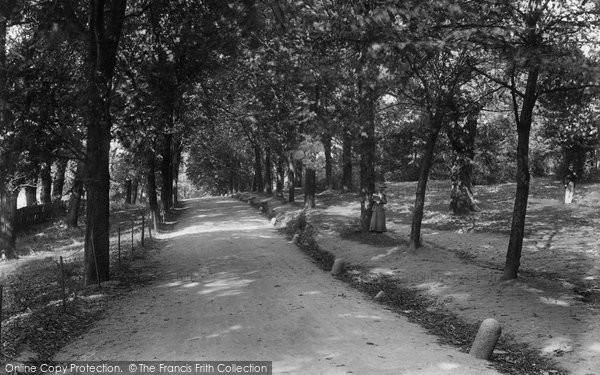 Photo of Streatham, Common, The Grove 1904