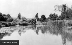 Sturminster Newton, River Stour c.1960