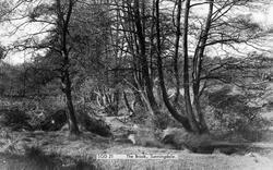 Sunningdale, The Brook c.1955