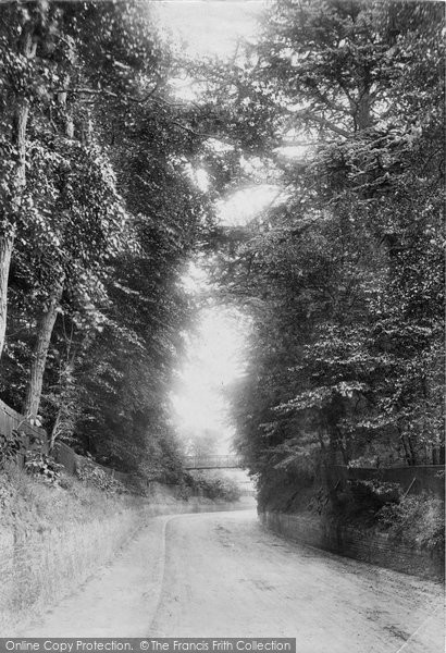 Photo of Sunninghill, a Lane 1901