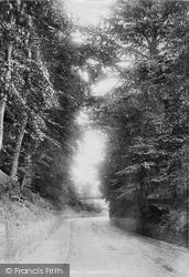 Sunninghill, A Lane 1901