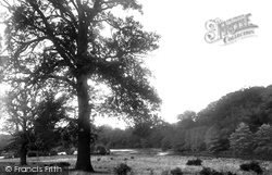 Sunninghill, Silwood Park 1934