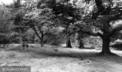 Sutton Coldfield, Gumslade, Sutton Park c.1965