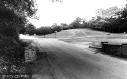 Holly Knoll, Sutton Park c.1960, Sutton Coldfield