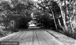 Sutton Coldfield, Sutton Park c.1960