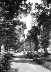 Sutton, Gander Green Lane 1898