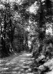 Sutton, Gander Green Lane 1903