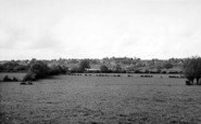 Sutton Valence photo