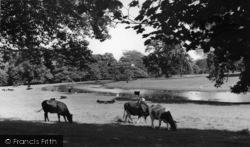 c.1955, Swinton Park