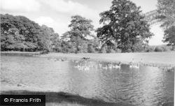 The Lake c.1960, Swinton Park
