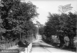 Sydenham, Southend Lane 1898