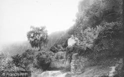 1893, Symonds Yat