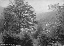 A Glimpse Of The Wye c.1890, Symonds Yat