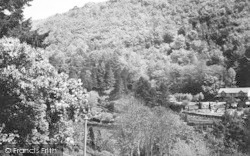 The View From Woodlea Guest House c.1955, Symonds Yat