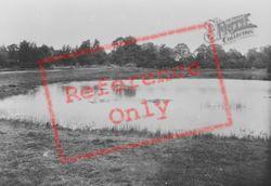 Pond 1932, Tadworth