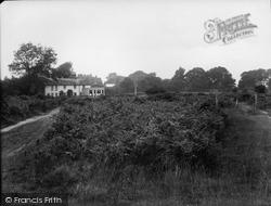 Tadworth, The Bell, Walton Heath 1925