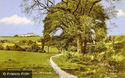 The Downs From Motts Hill, Walton Heath 1933, Tadworth