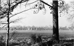 The Green c.1955, Tadworth