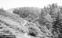 Tal-Y-Llyn, Path To Dol-Y-Cae Waterfall 1955