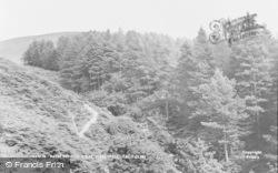 Tal-Y-Llyn, Path To Dol-Y-Cae Waterfall c.1960