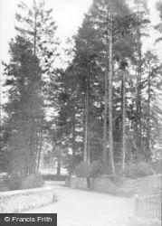 Talley, Village Entrance c.1955