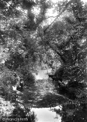 Batt's Park 1902, Taunton