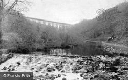 Tavistock, Grenofen Weir And Viaduct 1906