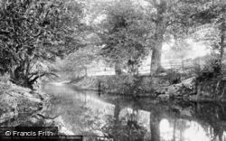 Tavistock, Meadows, Fitz's Pool 1906